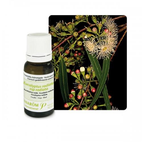 Pranarom eterično ulje eukaliptus
